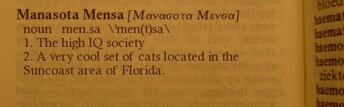 Websters definition, Manasota Mensa