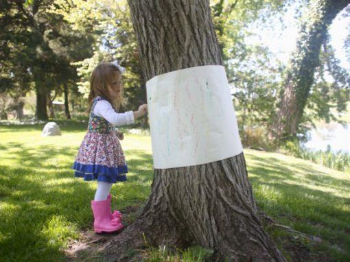 Outdoor Tree Bark Rubbings