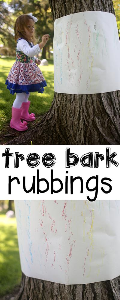 Tree bark tracings